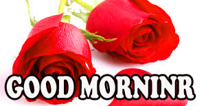 Good morning Images Wallpaper Photo Pics Free Download