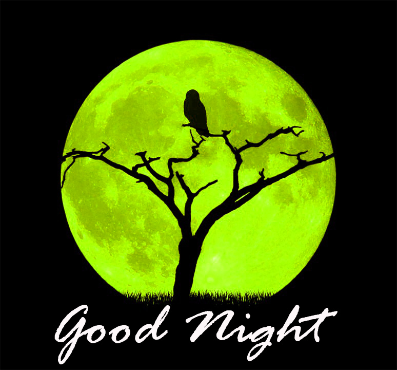 Good Night Images Wallpaper Pics Download