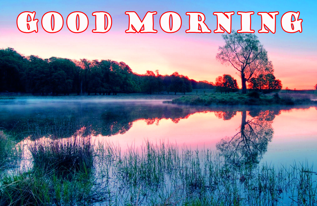 Good Morning Nature Images Photo Wallpaper Download