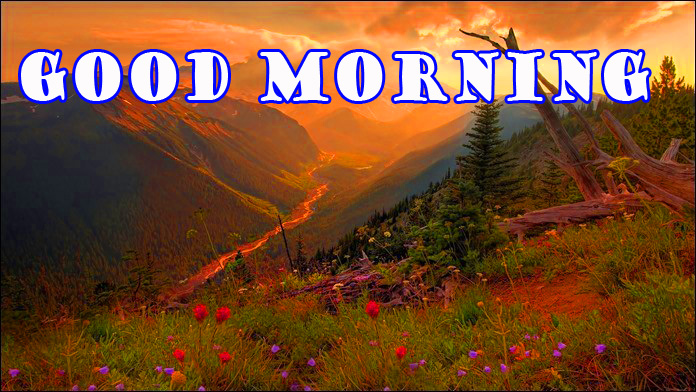 Good Morning Nature Photo Images Pictures Free Download