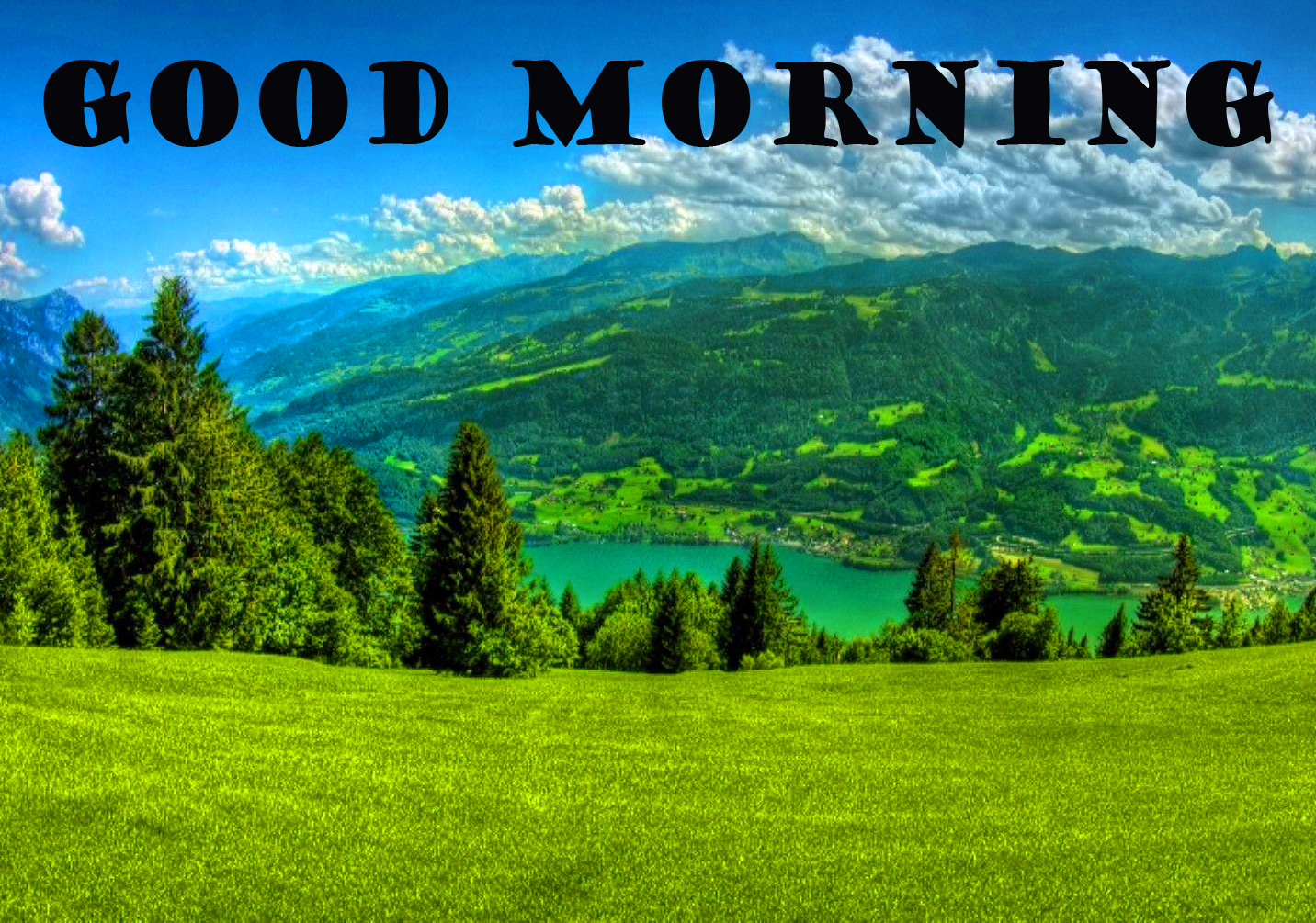 Good Morning Nature Wallpaper Pictures In HD