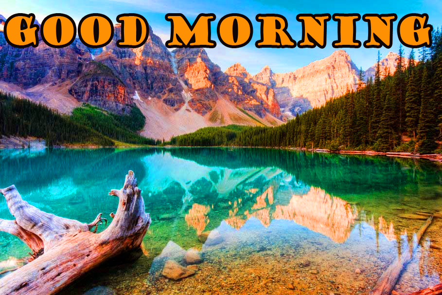 Good Morning Nature Pictures Images Photo HD Download