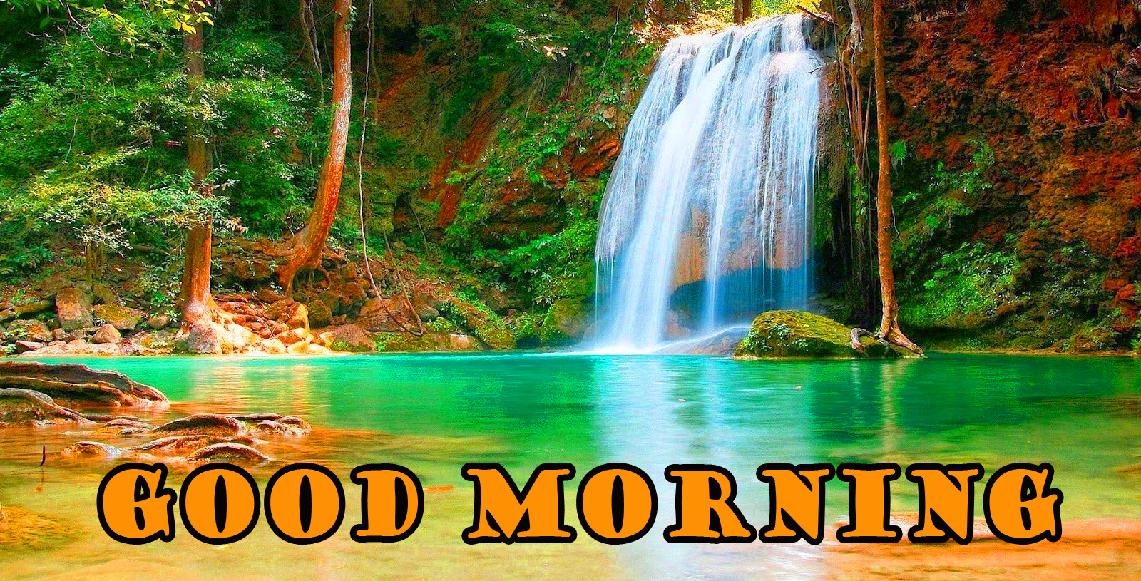 Good Morning Nature Images Photo Download In HD