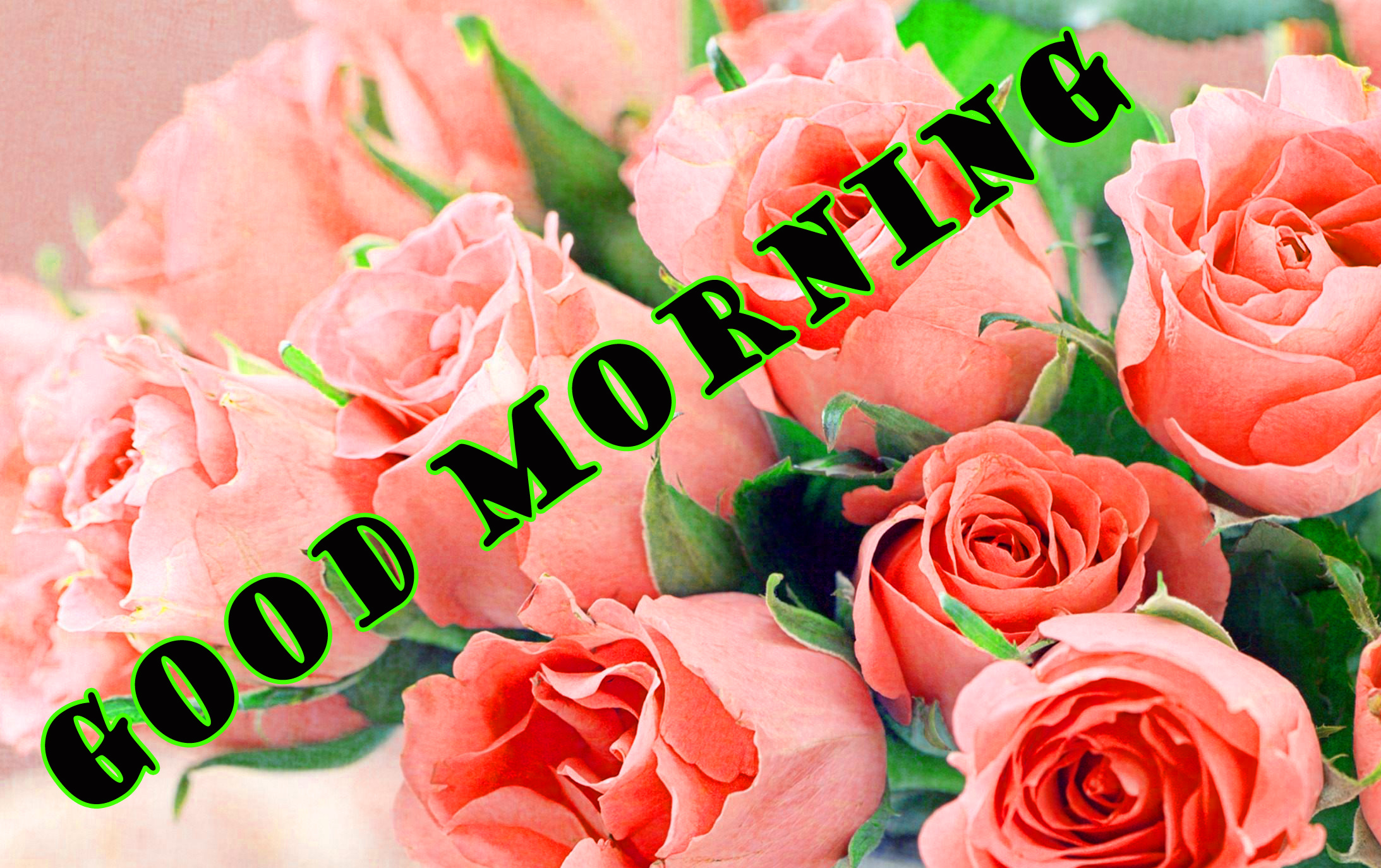 गुड मॉर्निंग New Wonderful Good Morning Pictures Images Photo HD