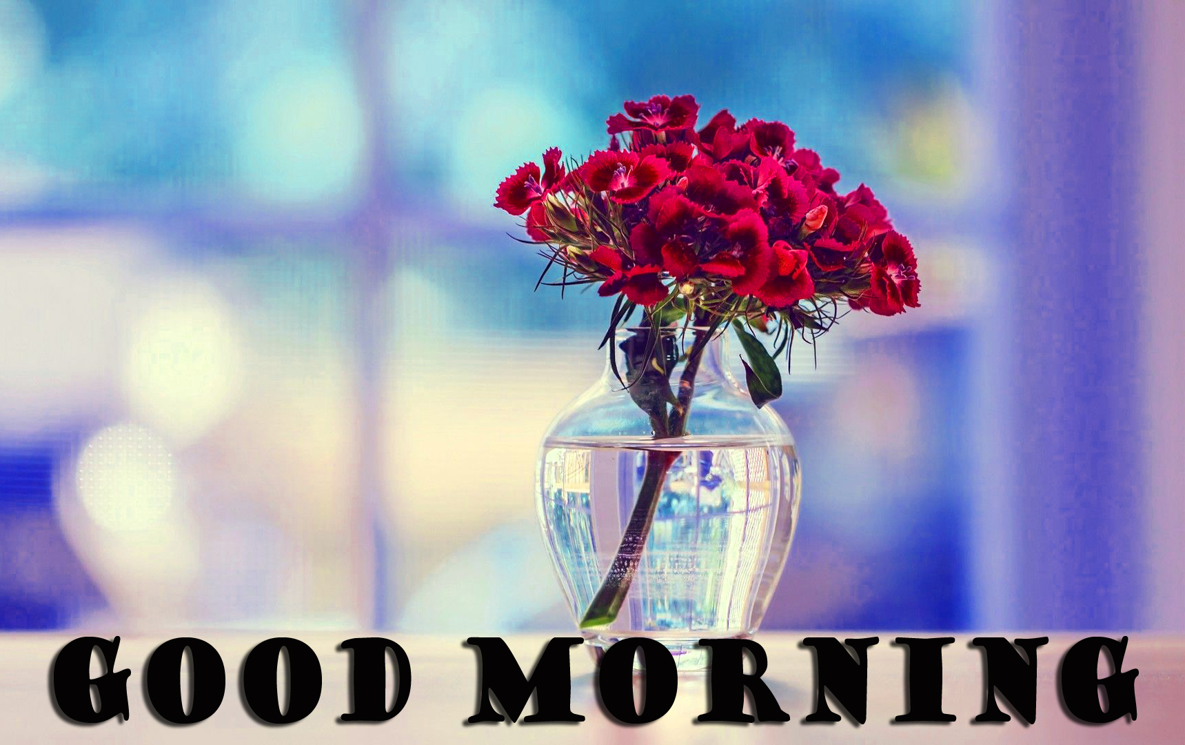गुड मॉर्निंग New Wonderful Good Morning Wallpaper Pictures Images HD Download