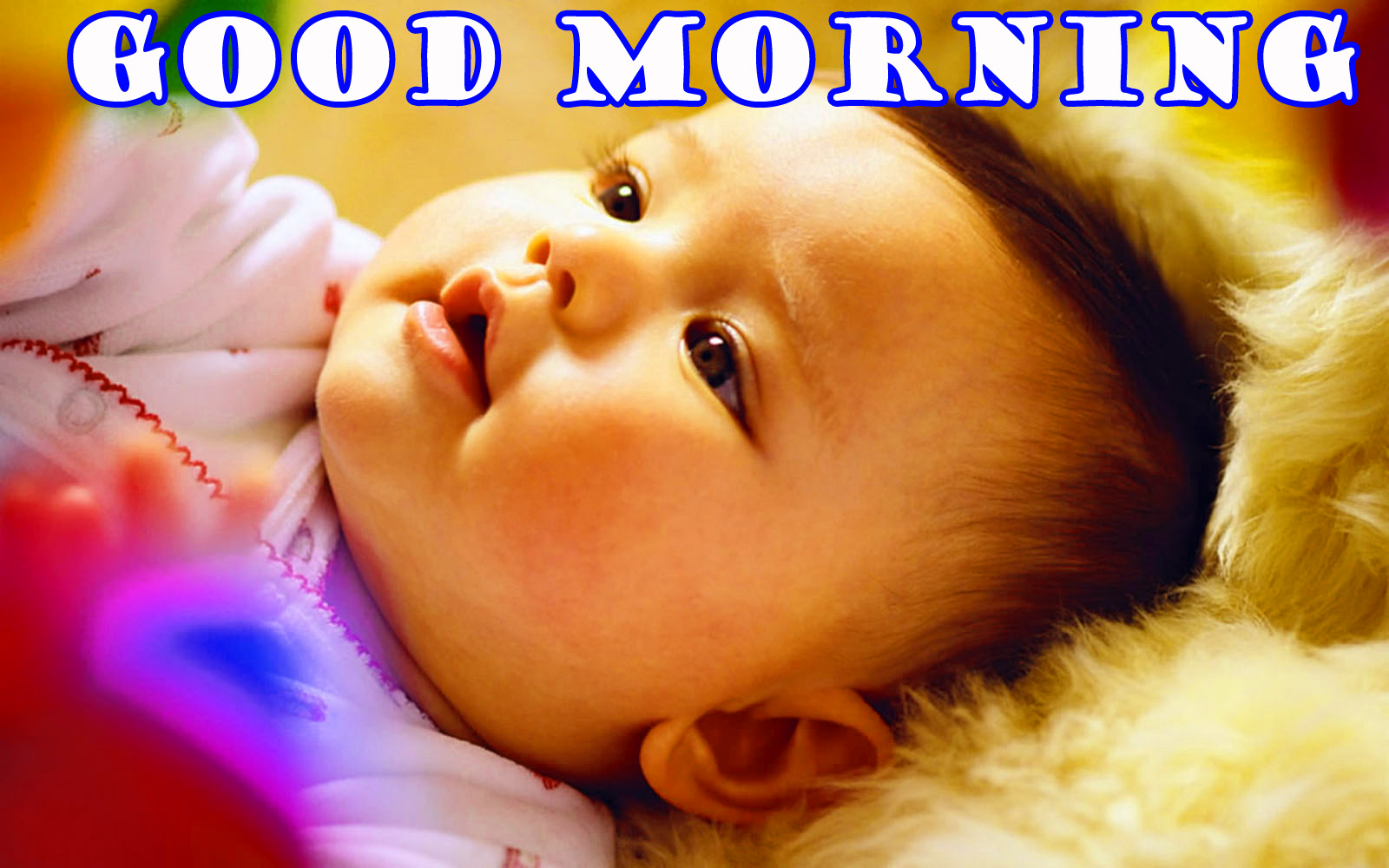 गुड मॉर्निंग New Wonderful Good Morning Wallpaper Pictures Photo For Whatsapp