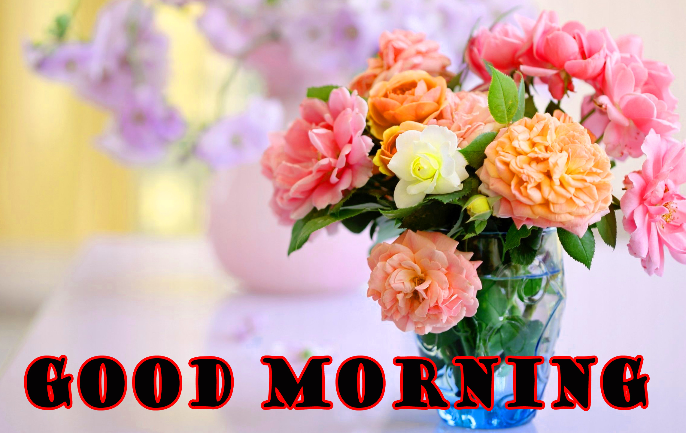 गुड मॉर्निंग New Wonderful Good Morning Wallpaper Pictures Images Download