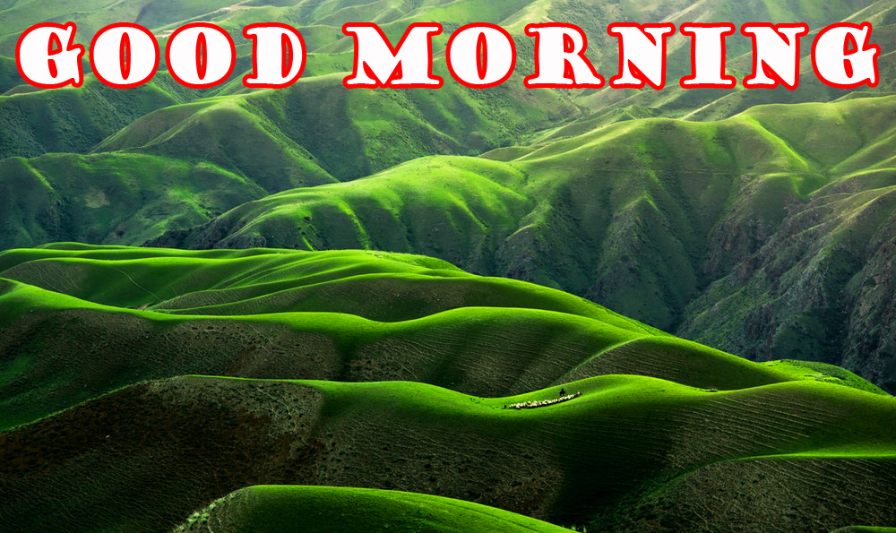 गुड मॉर्निंग New Wonderful Good Morning Pictures Images Photo Free HD