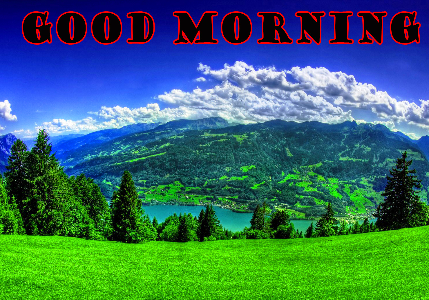 गुड मॉर्निंग New Wonderful Good Morning Pictures Images Photo Free Download