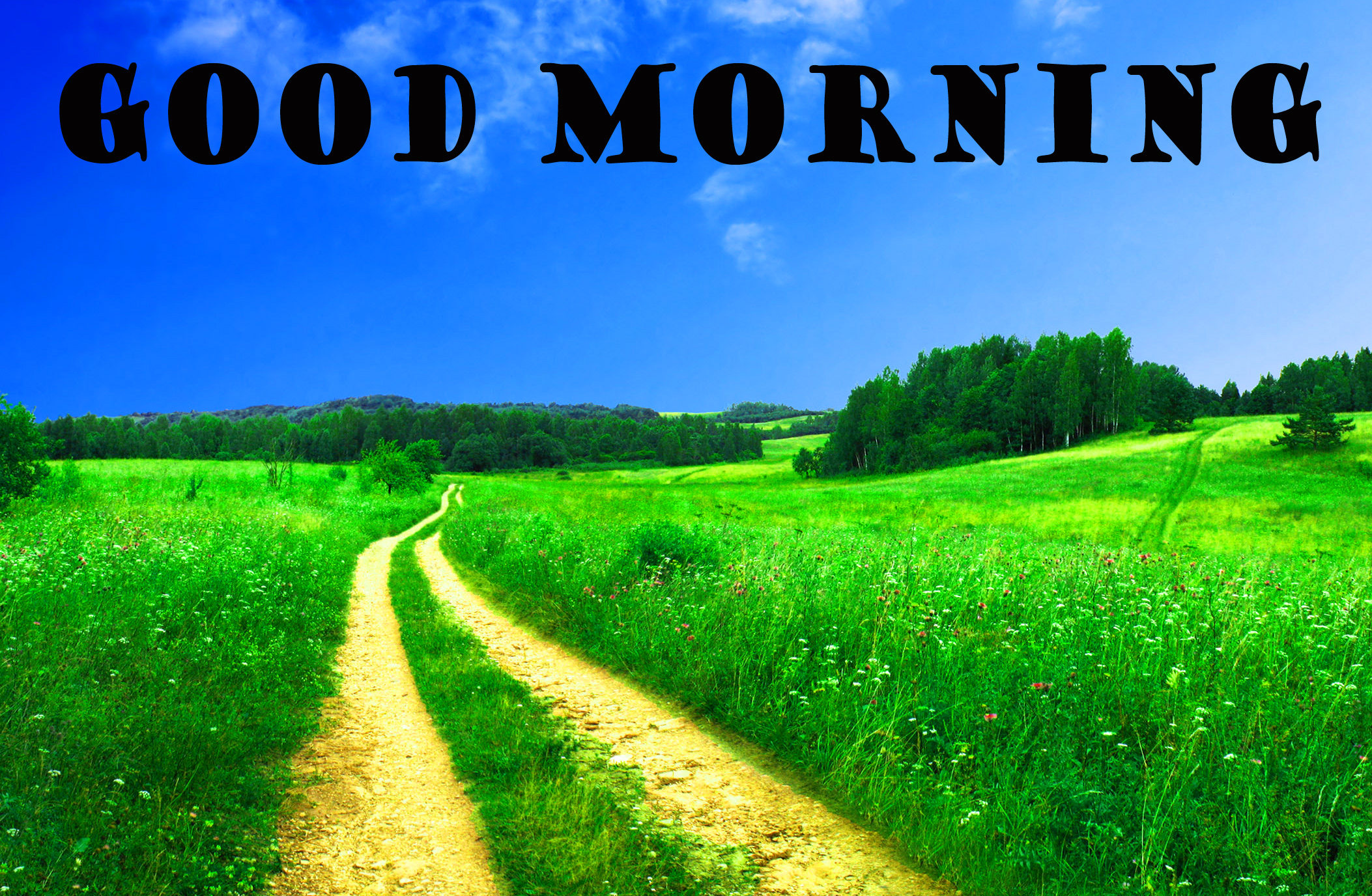 गुड मॉर्निंग New Wonderful Good Morning Images Photo Wallpaper Free Download