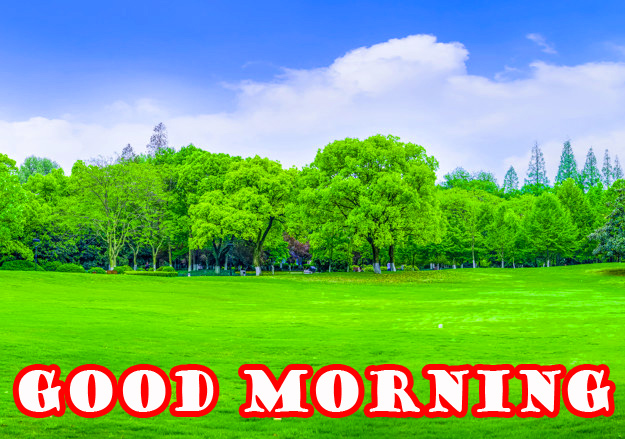 गुड मॉर्निंग New Wonderful Good Morning Images Photo Pics Download