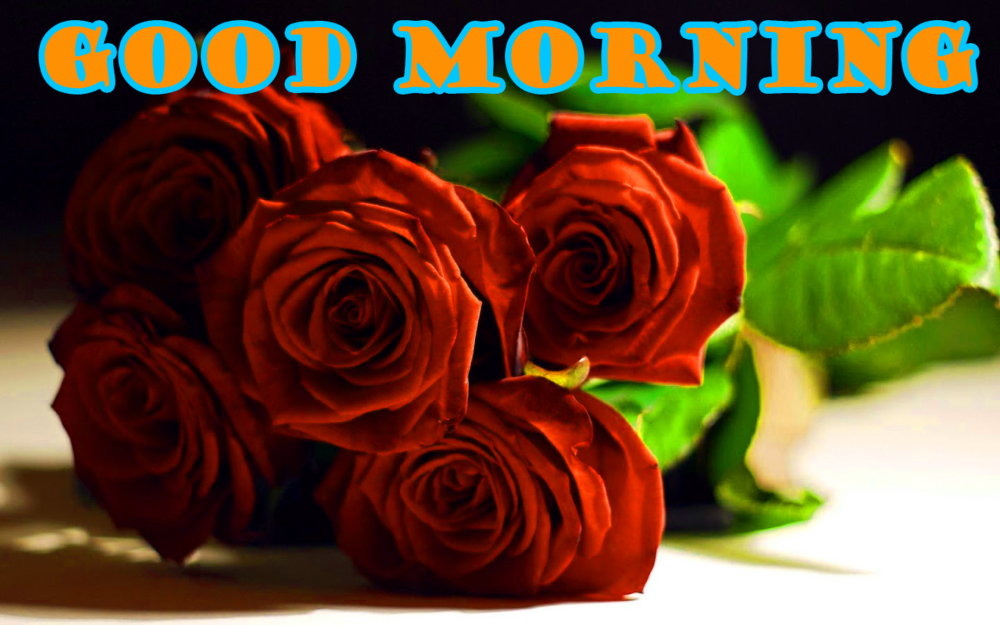 Good Morning Red Rose Wallpaper Pictures Images HD Download