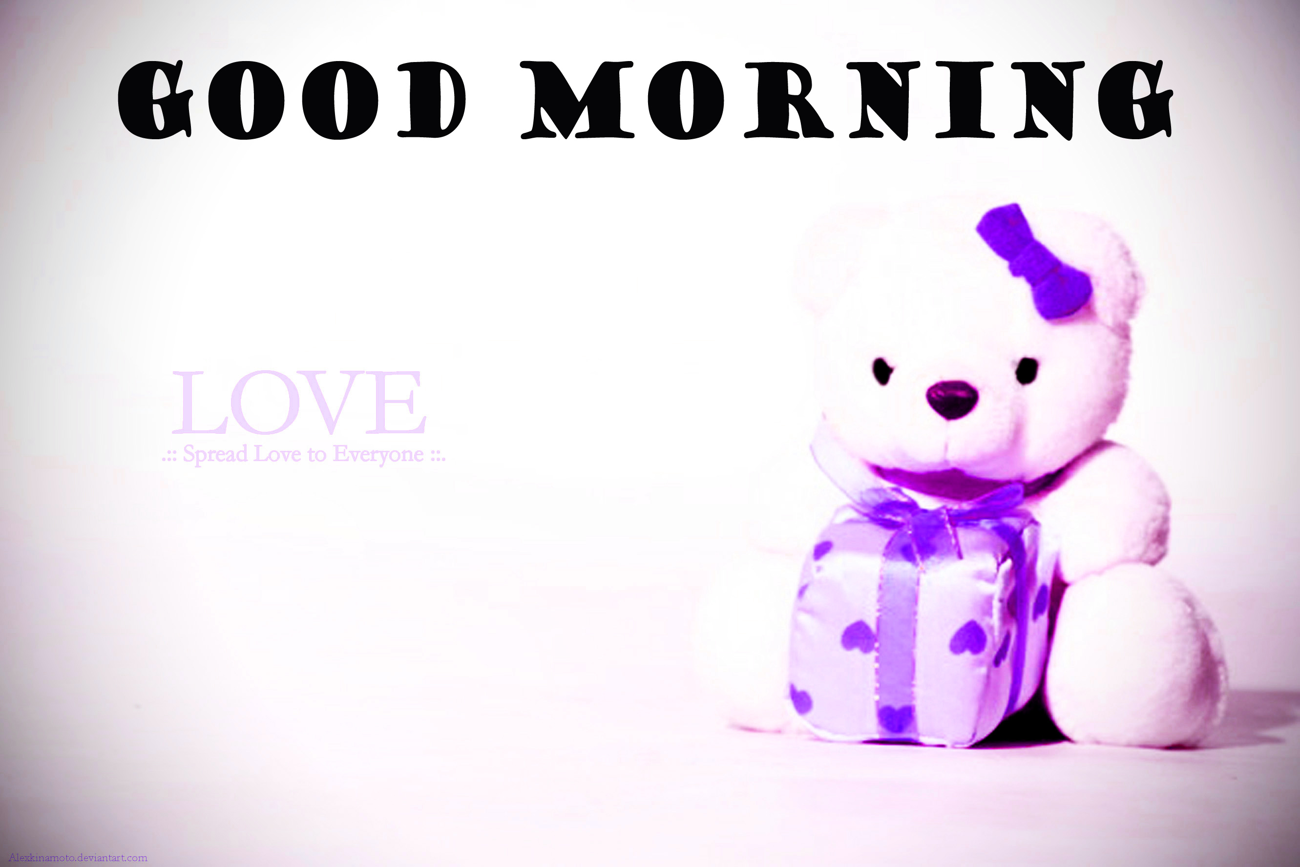 Special Wonderful Good Morning Wallpaper Photo Images Free Download
