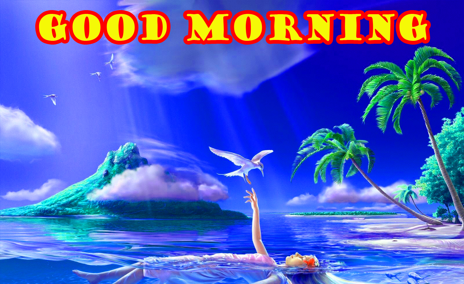 Special Wonderful Good Morning Photo Images Pictures Free HD Download
