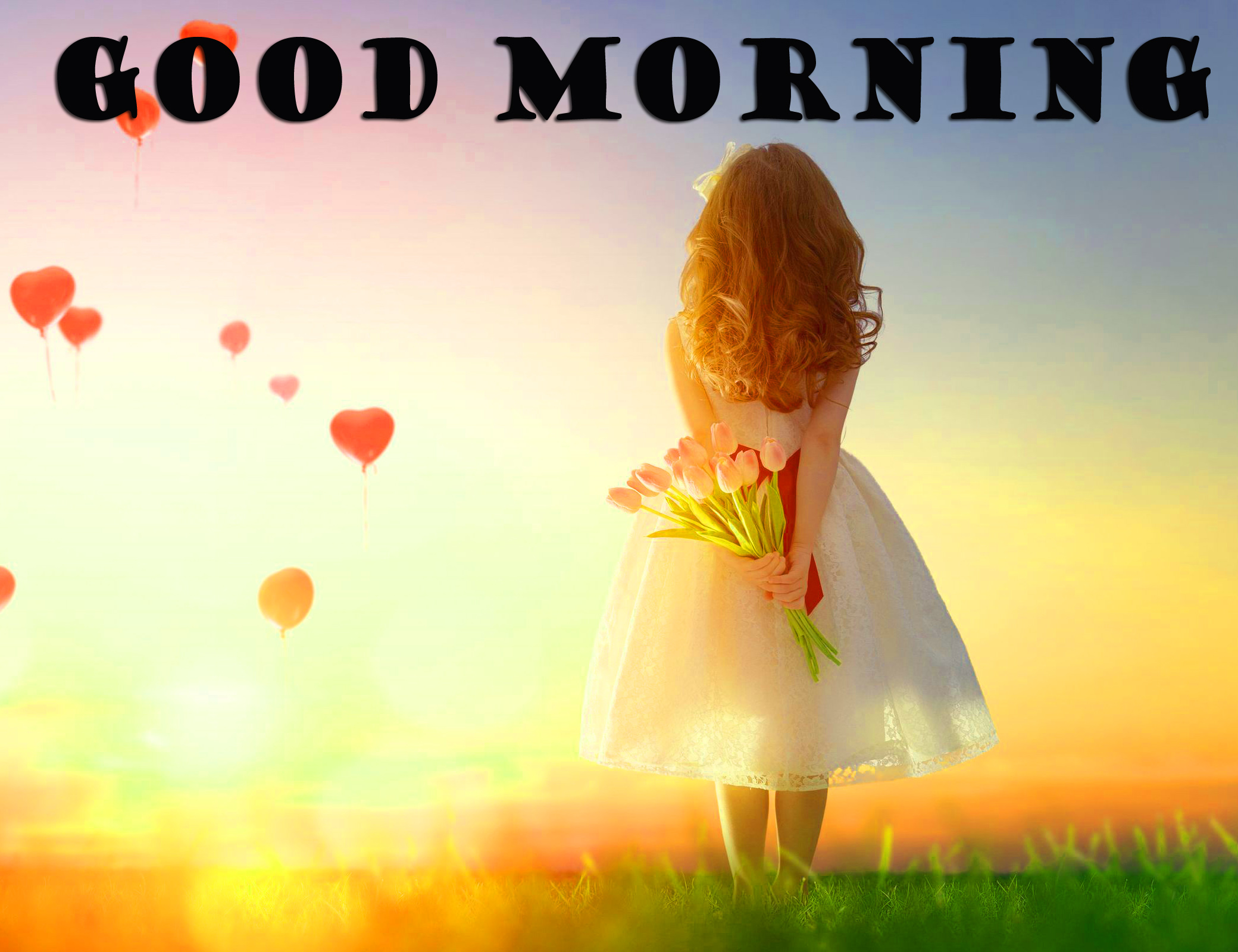 Special Wonderful Good Morning Photo Wallpaper Pictures Free HD