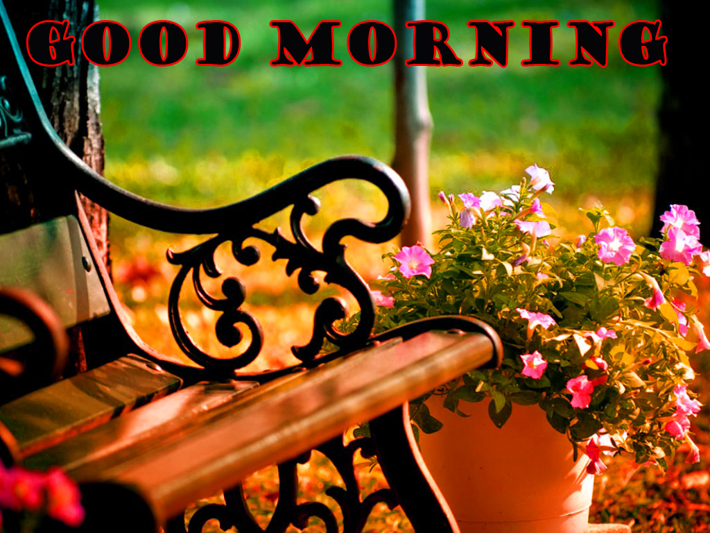 Special Wonderful Good Morning Wallpaper Pictures Free HD Download