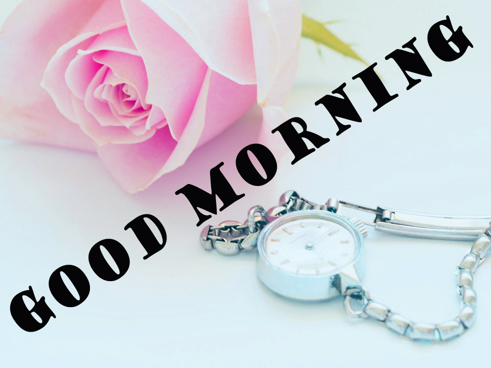 Special Wonderful Good Morning Wallpaper Photo Images Free HD Download