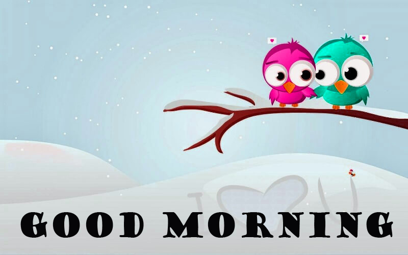Special Wonderful Good Morning Pictures Images Photo HD Download