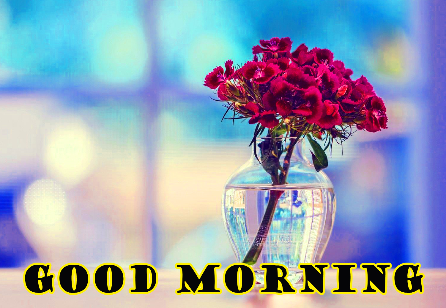 Special Wonderful Good Morning Pictures Images Download