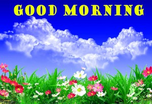 sweet good morning images Wallpaper Pictures Pic Download