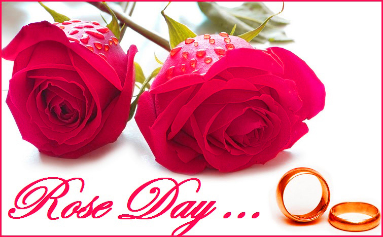 Happy Rose Day Images Photo Wallpaper Pictures Pics Download