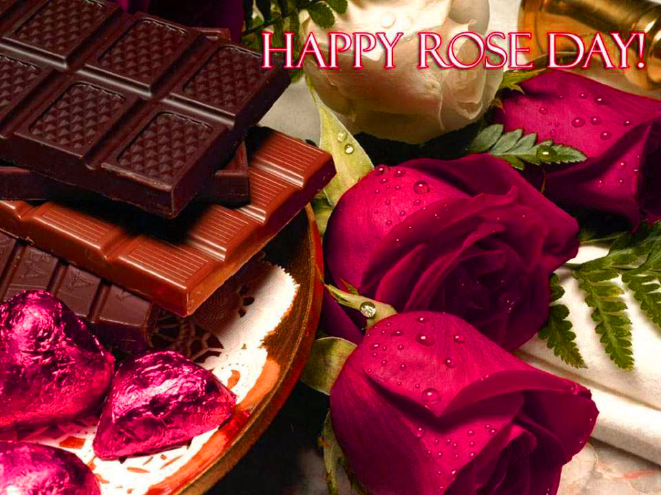 Happy Rose Day Images Photo Wallpaper Pictures Pics Free Download