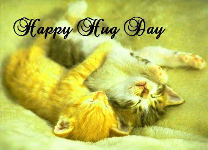 Hug Day Images  Husband Love Couple Girlfriend Wallpaper Photo Pics Download HD