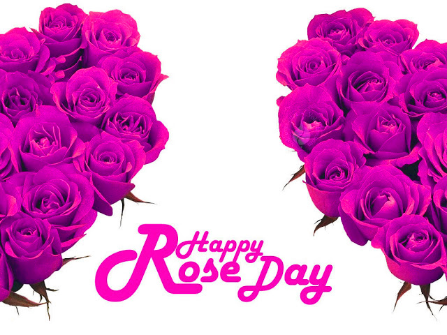 Happy Rose Day Images Photo Wallpaper Pictures Pics HD