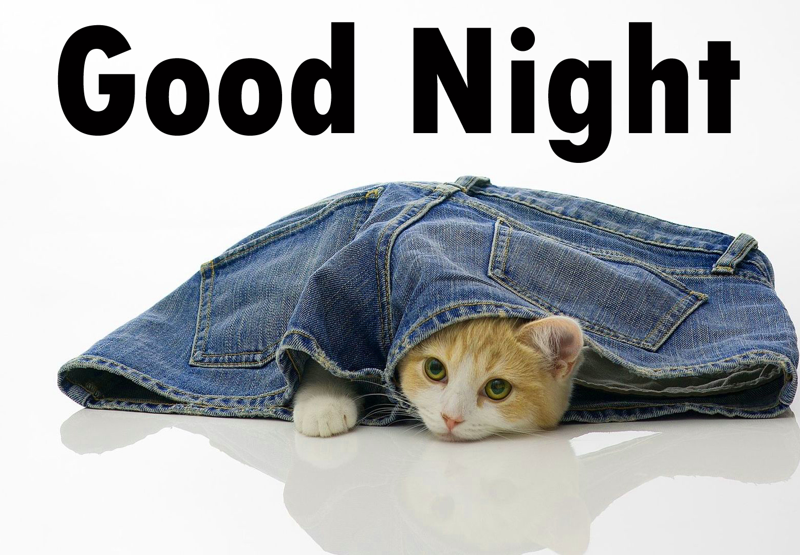 Funny Good night Images Wallpaper photo Pics Pictures HD