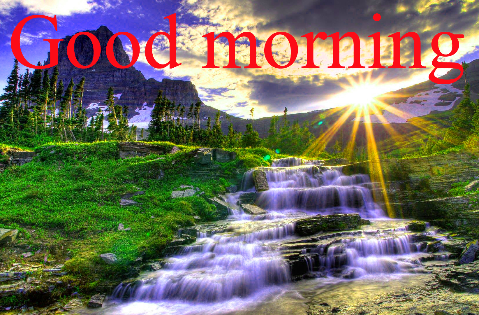 Good Morning and Good Luck Wishes For Student Images Photo Free HD