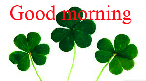 Good Morning and Good Luck Wishes For Student Pictures Images Free Download
