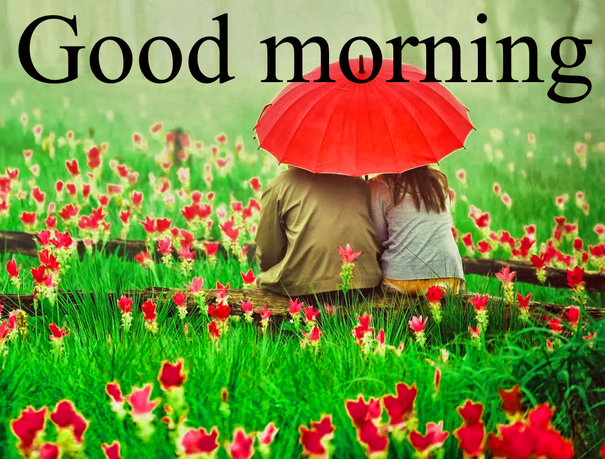 Romantic good morning Images Wallpaper Pictures Pics Download For Facebook