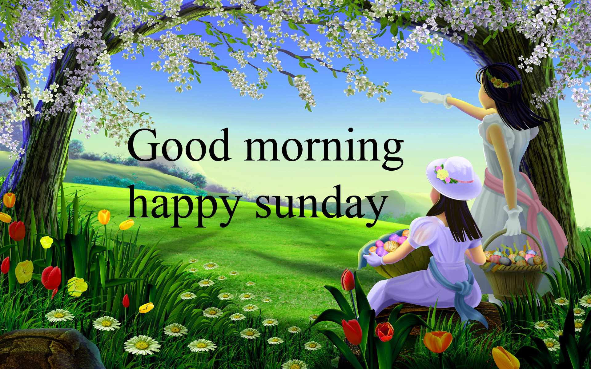Sunday Good Morning Images Wallpaper Photo Free HD
