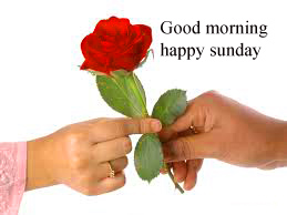 Sunday Good Morning Images Wallpaper Photo Free Download