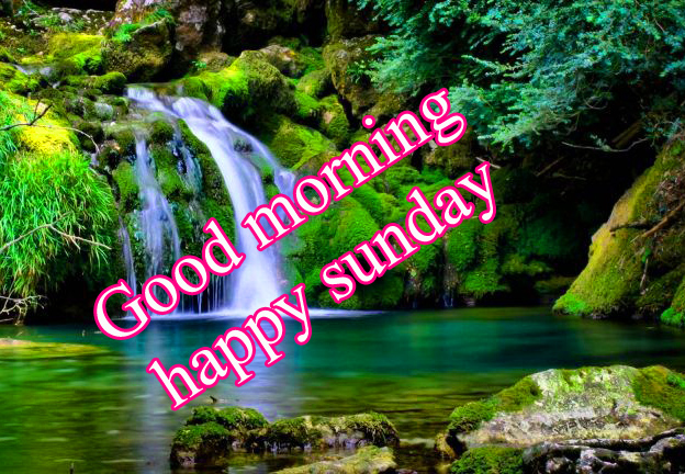 Sunday Good Morning Images Pics Wallpaper Photo Free HD