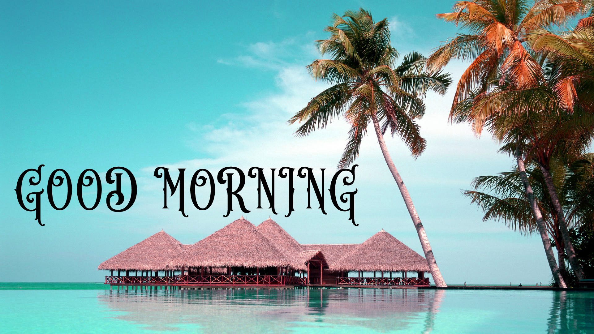 good morning Images for facebook tumblr pinterest and twitter Wallpaper Pics HD Download