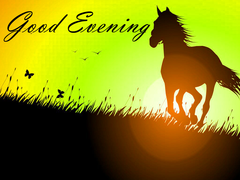 Good Evening Images Pics  Pictures Photo Wallpaper Free Download