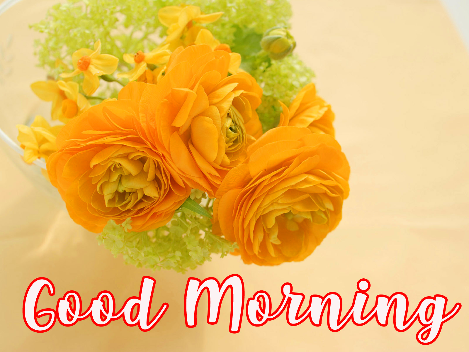 Good Morning Wishes Images With Romantic roses photo Pics HD For Whatsapp