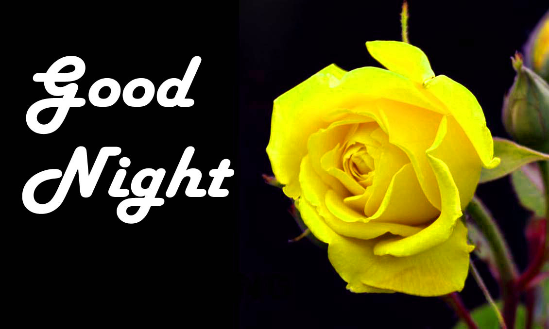 Good Night Images Wallpaper Download