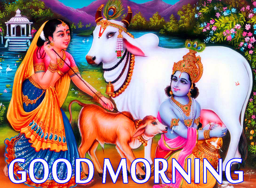 Radha Krishna Good Morning Images Wallpaper Pics Free Download