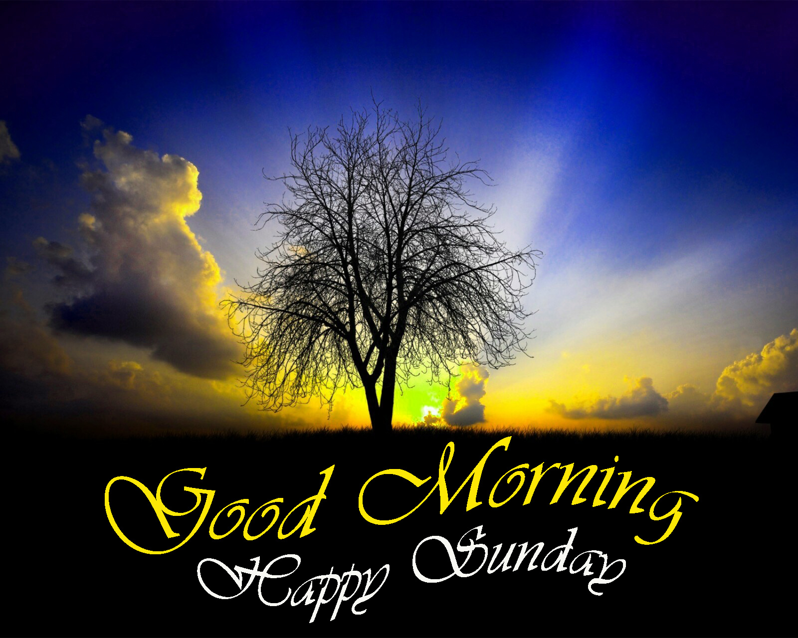 Sunday good morning Images Wallpaper Download