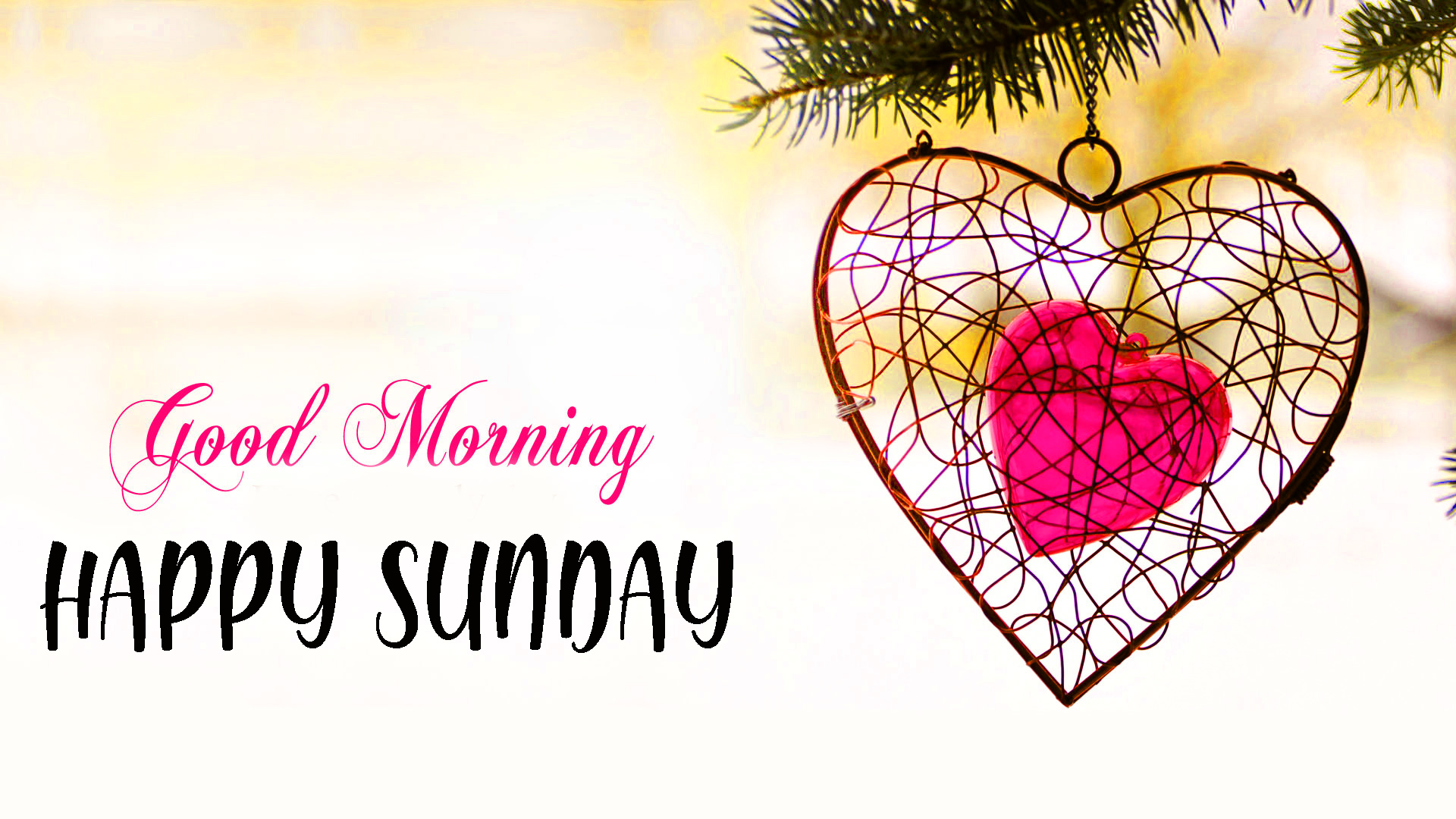 Sunday good morning Images Wallpaper Pics for Lover