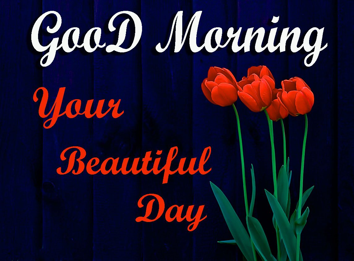 HD Good Morning Pics Download