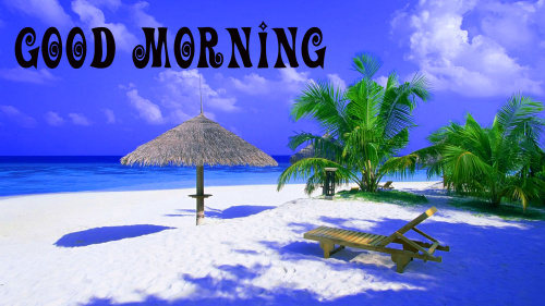 Good Morning Nature Wallpaper Pictures Photo for Whatsapp