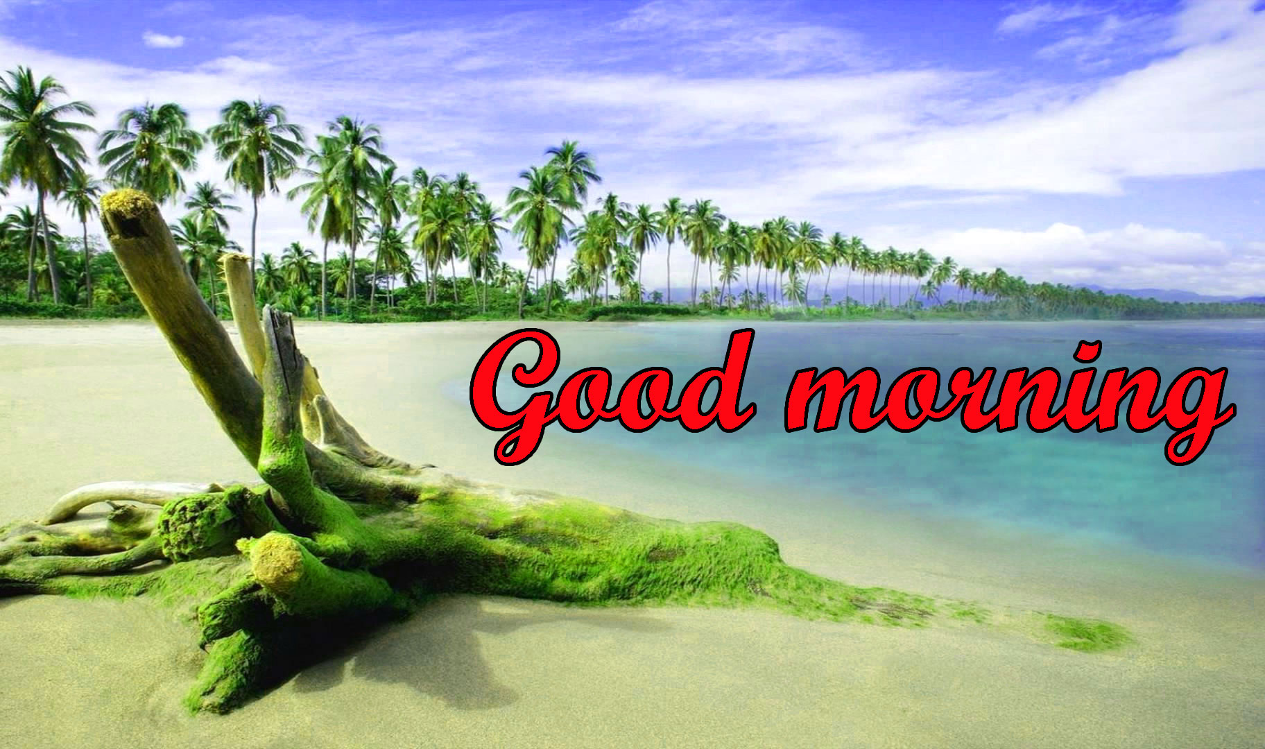 BEAUTIFUL 3D GOOD MORNING IMAGES WALLPAPER PICS DOWNLOAD