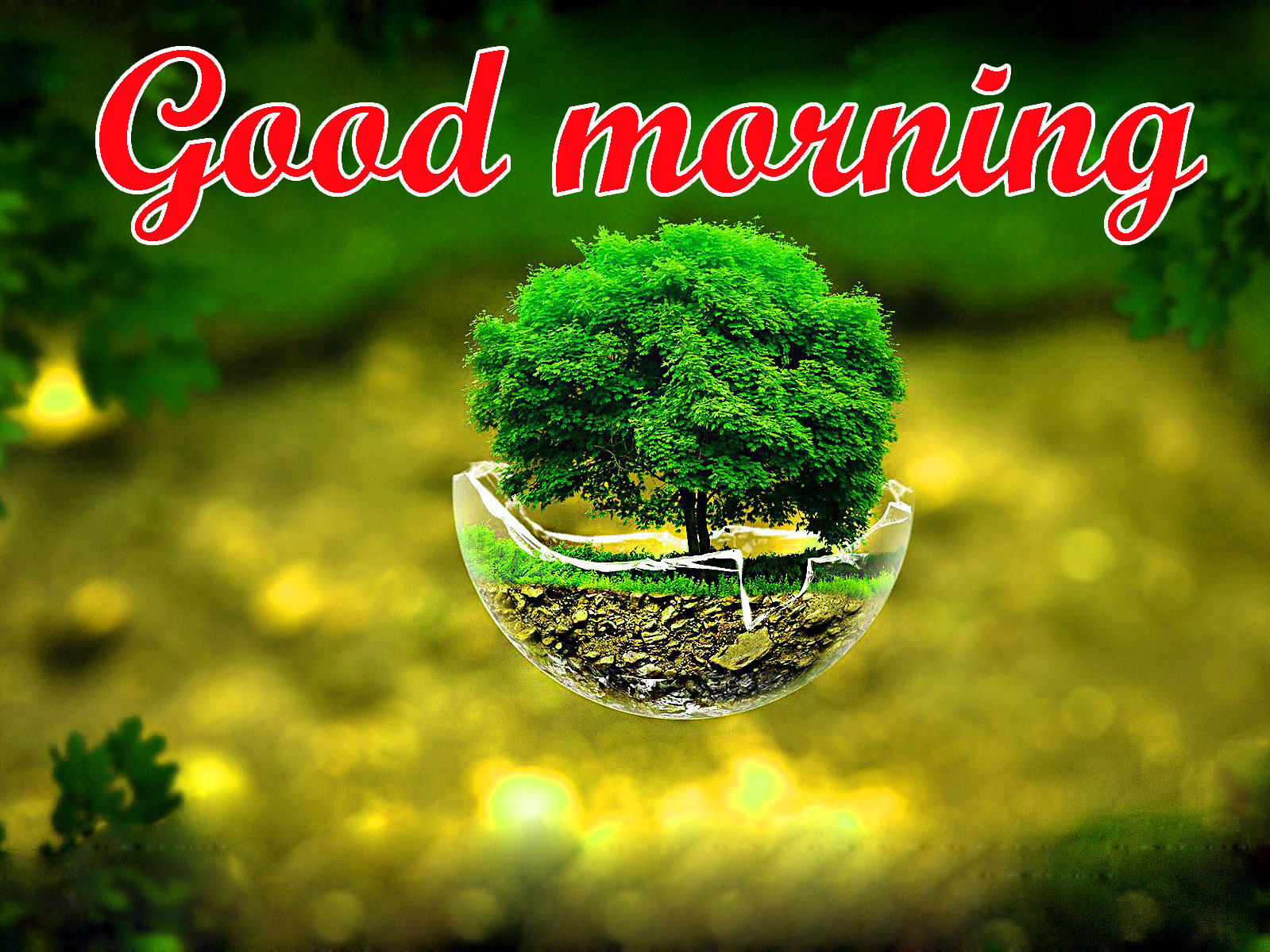BEAUTIFUL 3D GOOD MORNING IMAGES PHOTO PICS WITH BEAUTIFUL NATURE