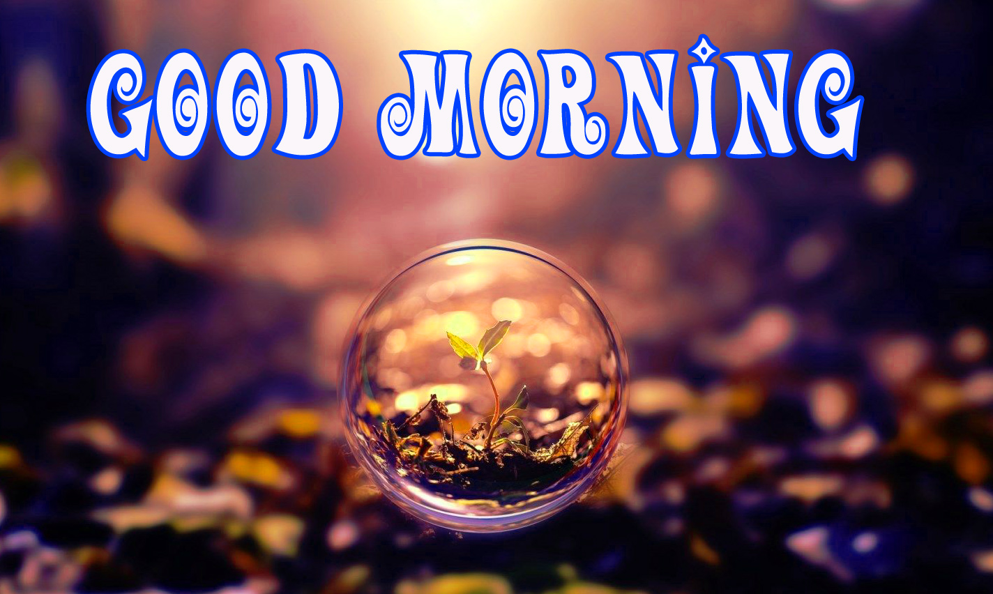 good morning pictures Images Pics Download