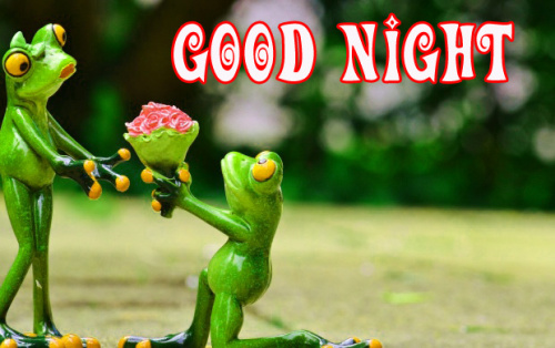 funny good night images Wallpaper Pictures Free Download