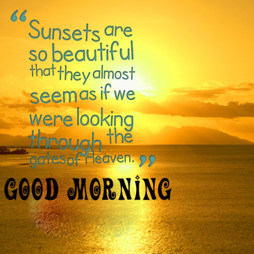 Good Morning My Sunshine Quotes Images Photo for Whatsapp