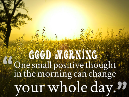 Good Morning My Sunshine Quotes Images Pics Pictures Free Download